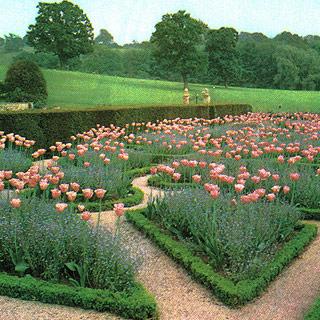 Jardin Angleterre