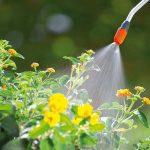 Bien choisir son pulvérisateur pour le jardin