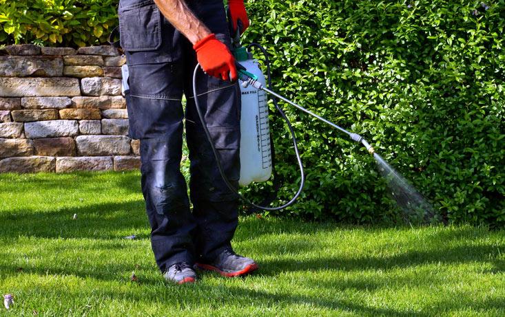 Pulvérisateur pour le jardin