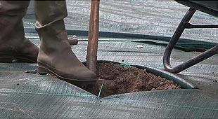 Techniques de jardinage