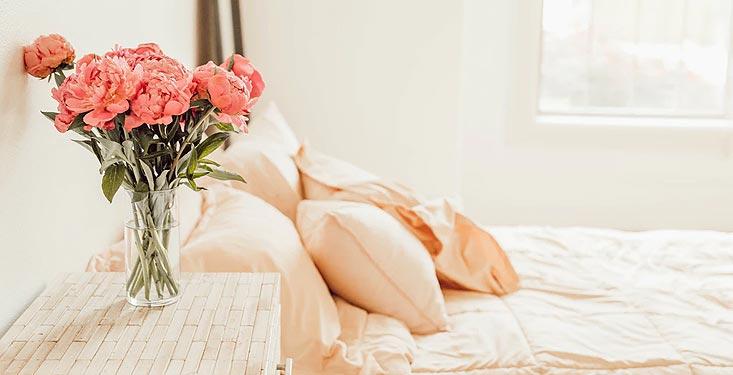 Air pur et bonnes odeurs à la maison